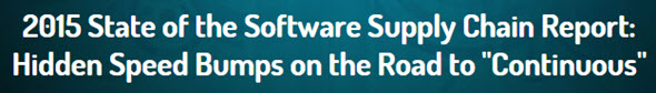 Software Supply Chain Report
