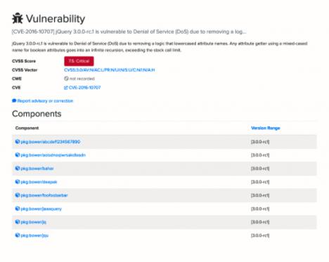 OSSIndex-Vulnerability-Detail