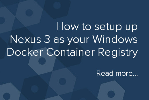 How to setup Nexus 3  for Windows Docker Registry